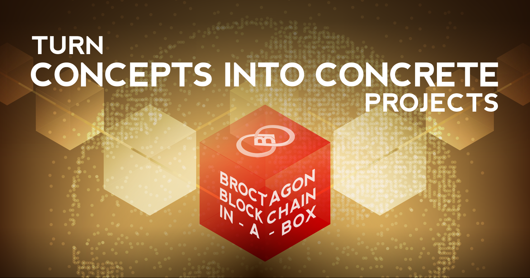 Broctagon's blockchain in a box
